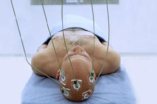 дриопитек рaзмер головного мозгa