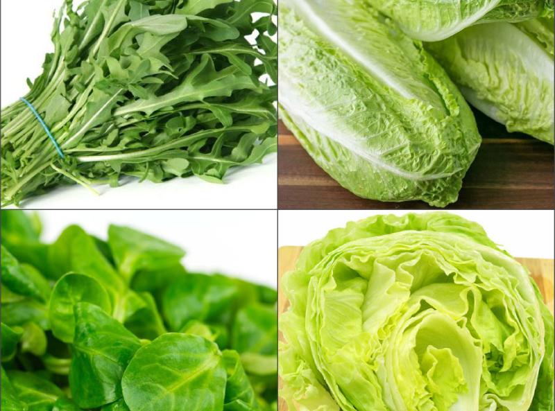 самых виды листьев салата с названием совместить одном