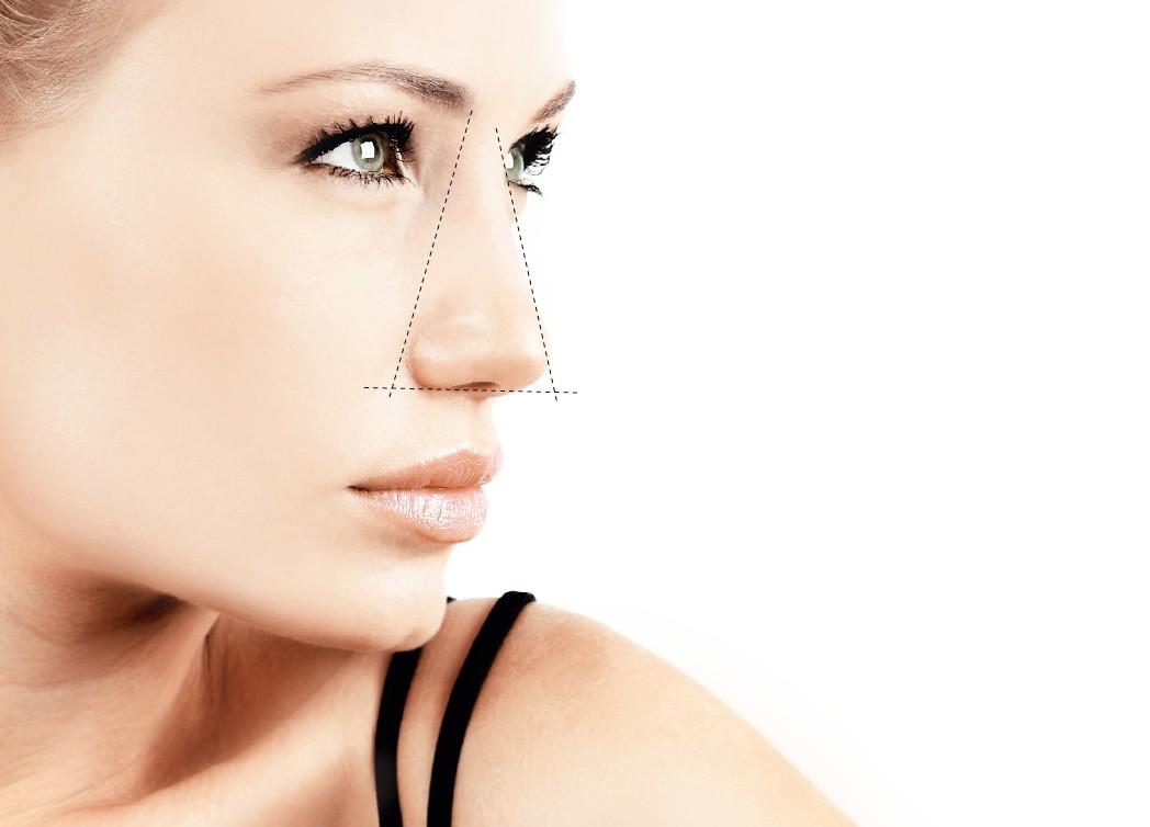 Пластическая и восстановительная хирургия носа, литература клиника пластическая хирургия нижний новгород